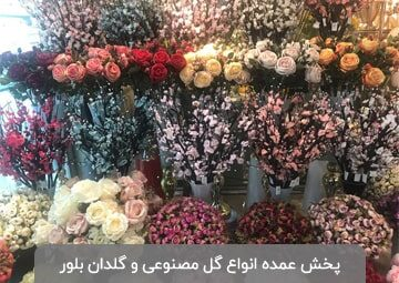 پخش گل و گلدان زانوسی