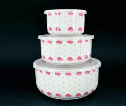 ست ظروف نگهدارنده غذا سرامیکی گلدار