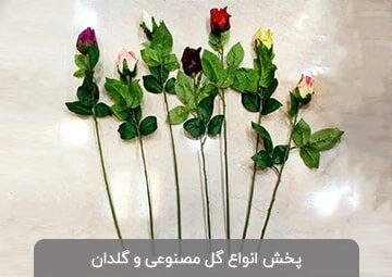 پخش گل و گلدان آرامیس